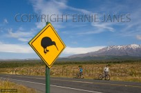 Kiwi Sign Mount New Zealand (EAJ009143)