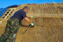 Thatching with Norfolk reed Trunch Village Norfolk (EAJ009647)