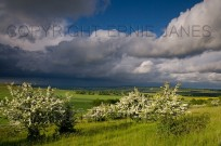 Stormy Weather Over Chiltern Downland Ivinghoe (EAJ009932)